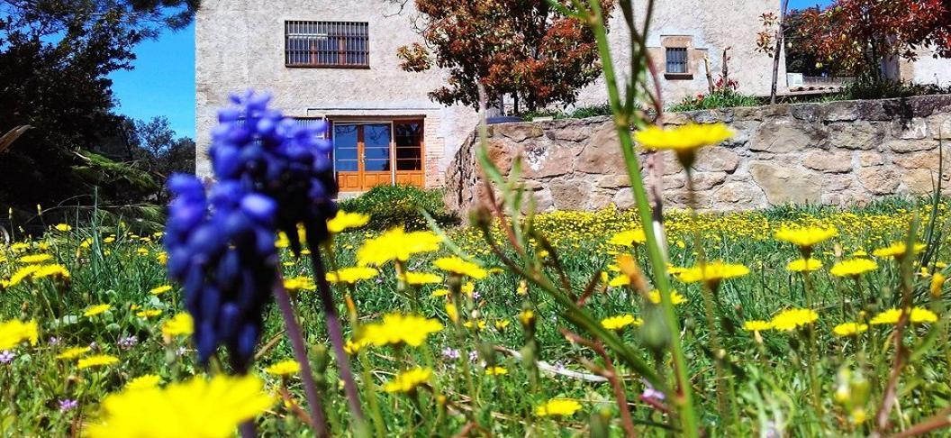 Vallferosa Casa turisme rural collita