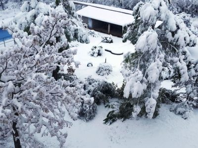 Jardí nevat casa rural esquí