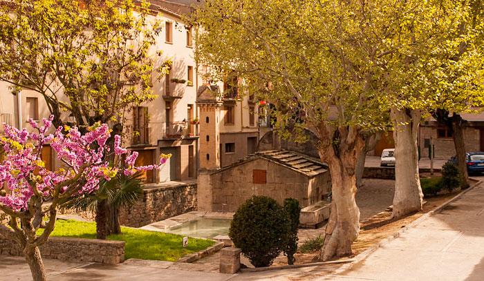 Casa rural Vallferosa. Piscina barbacoa calçotades